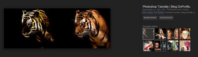 Zobrazení autora fotky u prohlížení obrázku googlu