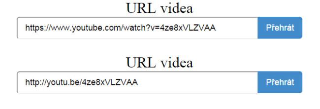 Náhled zadání URL videa